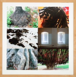 Roots, Michael Harris, 2009